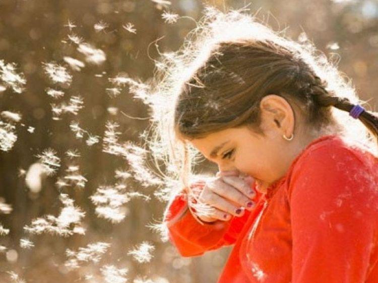 Payız allergiyasından qorunmaq üçün  BUNLARI EDİN